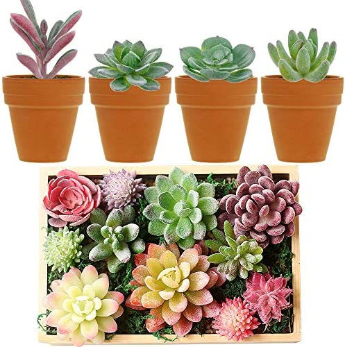 Augshy 24 Pack Artificial Succulent Plants Unpotted Mini Fake Succulents Plant for Lotus Landscape Decorative Garden Arrangement
