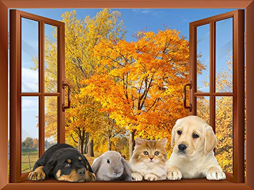 Dogs Rabbit and a Cat Lying on The Windowsill with Golden Leaves in The Background Removable Wall Sticker Wall Mural