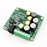 Inno-Maker Raspberry Pi HiFi AMP HAT 25W Class-D Power Amplifier TAS5713 Expansion Board Audio Module for Raspberry Pi 3 B+ Pi Zero Nichicon Capacitor (AMP HAT)