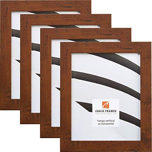 Craig Frames FM26WA 8 x 10 Inch Picture Frame, Dark Brown, Set of 4