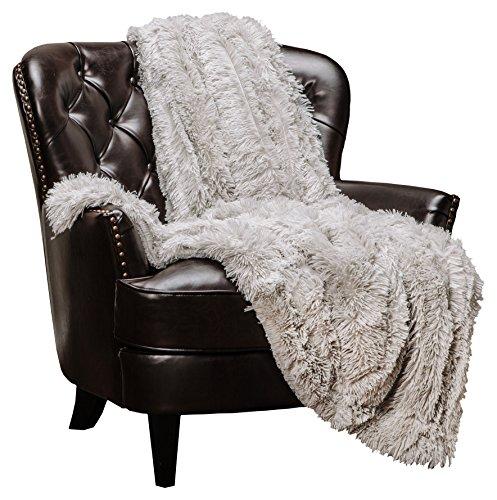 Chanasya Super Soft Shaggy Longfur Throw Blanket | Snuggly Fuzzy Faux Fur Lightweight Elegant Cozy Plush Sherpa Microfiber Blanket | for Couch Bed Chair Photo Props - 50x 65 - Silver Light Grey