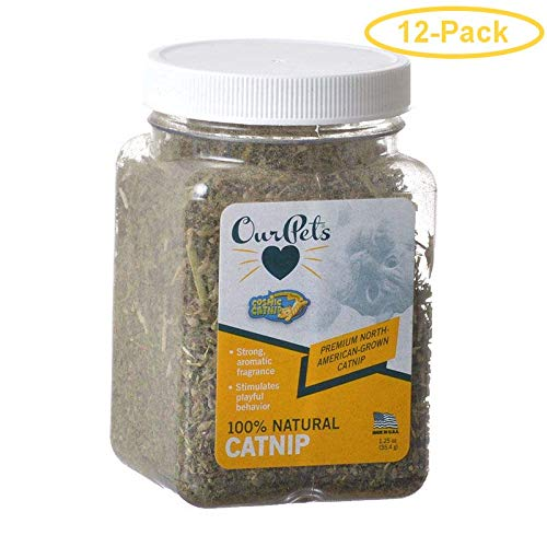 OurPets Cosmic Catnip Cosmic Catnip 1 oz Cup - Pack of 12