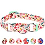 Blueberry Pet Spring Scent Inspired Rose Print Safety Training Martingale Dog Collar, Pastel Pink, Medium, Heavy Duty Adjustable Collars for Dogs
