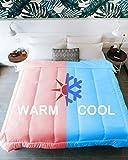 KÖMFORTE | Couples Comforter | Duvet Insert | Warm & Cool Sides for Him and Her | Dual Zone Luxury Microfiber Alternative Down Blanket (White, Queen)