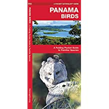 Panama Birds: A Folding Pocket Guide to Familiar Species (A Pocket Naturalist Guide)