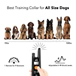 Dog Training Collar - Rechargeable Dog Shock Collar w/3 Training Modes, Beep, Vibration and Shock, 100% Waterproof Training Collar, Up to 1000Ft Remote Range, 0~99 Shock Levels Dog Training Set 11