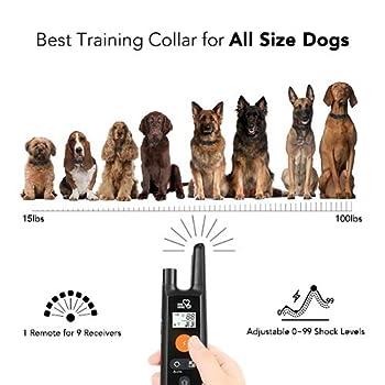 Dog Training Collar – Rechargeable Dog Shock Collar w/3 Training Modes, Beep, Vibration and Shock, 100% Waterproof Training Collar, Up to 1000Ft Remote Range, 0~99 Shock Levels Dog Training Set