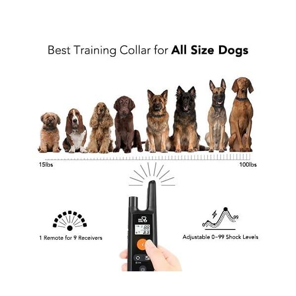 Dog Training Collar - Rechargeable Dog Shock Collar w/3 Training Modes, Beep, Vibration and Shock, 100% Waterproof Training Collar, Up to 1000Ft Remote Range, 0~99 Shock Levels Dog Training Set 4