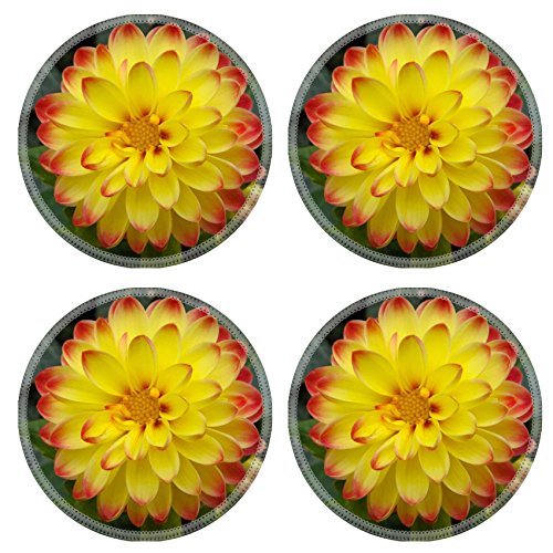 Custom Coaster Set of 4 ,MSD Unique Printed Coaster Cup Mat Design for flower nature summer garden dahlia yellow spring plant orange macro green flora color botany red -