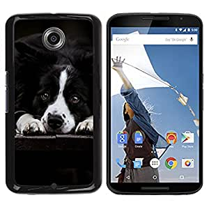 PC/Aluminum Funda Carcasa protectora para Motorola NEXUS 6 / X / Moto X Pro Border Collie Black White Dog Pet Canine / JUSTGO PHONE PROTECTOR