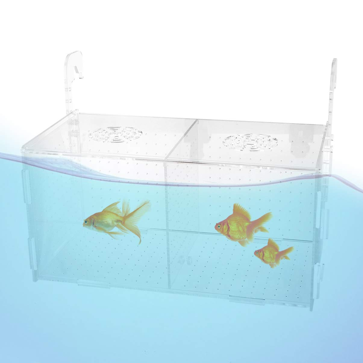 POPETPOP Fish Tank Breeding Isolation Box Aquarium Incubator Hatching Boxes Parenting Box Multifunctional Acrylic Fish Tank Holder 301516cm (Hook Pattern) by POPETPOP