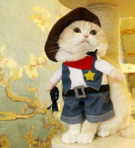 SDCXV Vaquero transformado Ropa Divertida del Gato Ropa para Mascotas Disfraz: Amazon.es: Productos para mascotas