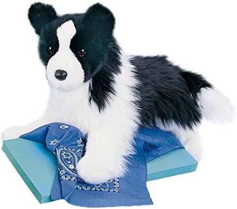 Douglas Chase Border Collie [並行輸入品]