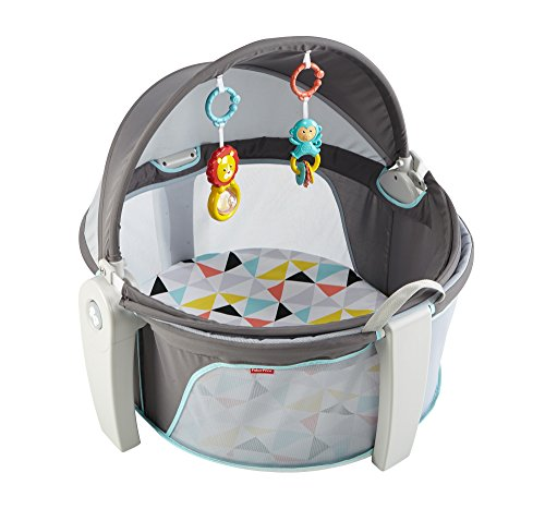 Find Bargain Fisher-Price On-The-Go Baby Dome