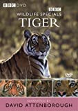 Wildlife Specials: Tiger