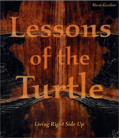 Download Lessons of the Turtle PDF