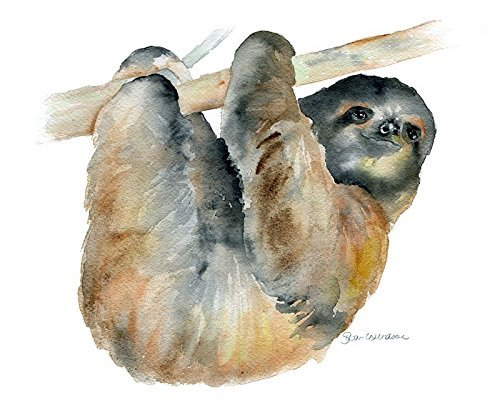 Sloth-Watercolor-Painting-Giclee-Print-Reproduction