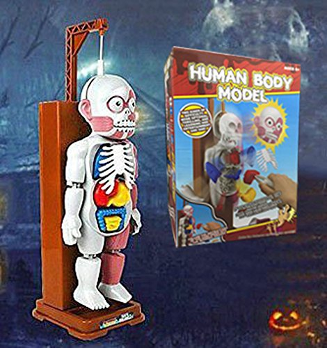 3D Puzzle Human Body Organ Model Forr Kids Horror Spoof Tricky Toys with Background Music Table Game / Desktop Game / Horror Game / Educational Game Toy (idea for Halloween, (Halloween Background Desktop)