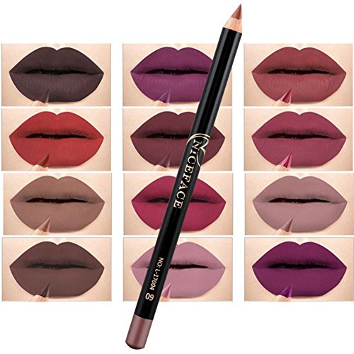 Cocohot 12 Pcs/Set Professional Waterproof Matte Lipstick Li
