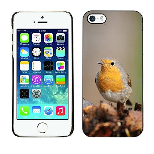 Premio Sottile Slim Cassa Custodia Case Cover Shell // F00008508 oiseau // Apple iPhone 5 5S 5G