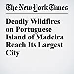 Deadly Wildfires on Portuguese Island of Madeira Reach Its Largest City | Raphael Minder