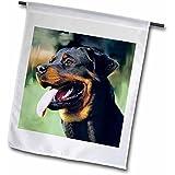 3dRose fl_4378_1 Rottweiler Garden Flag, 12 by 18-Inch