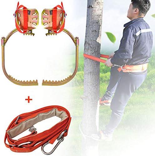 ツリークライミングスパイクステンレススチールツリークライミングツール、狩猟観察用ツリークライミングツール、果物狩り,250withsafetybelt
