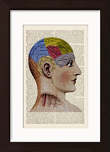 ted / Matted Dictionary Art Ready To Frame Print ()