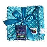 Reversible Unisex Children's Soft Baby Blanket Minky Dot (Choose Color) (Turquoise)