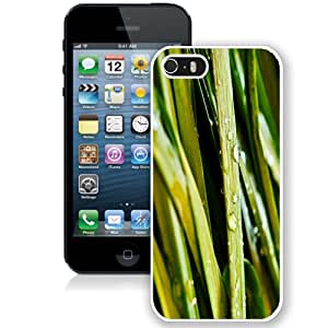 Fashion Custom Designed Cover Case For iPhone 5S Grassy White Phone Case