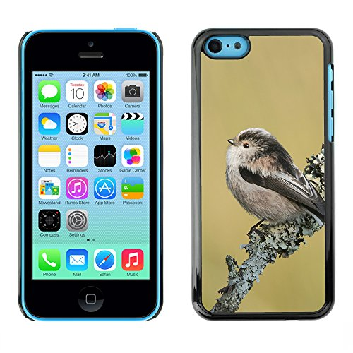 Premio Sottile Slim Cassa Custodia Case Cover Shell // F00014744 oiseau // Apple iPhone 5C