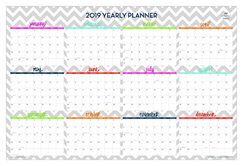 Dabney Lee for Blue Sky 2019 Laminated Erasable Wall Calendar, January 2019 - December 2019, Double Sided, 36