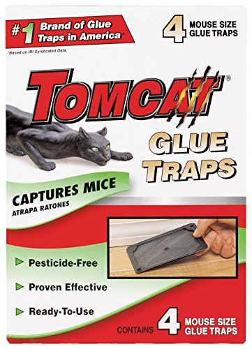 - Tomcat Mouse Glue Trap, 4-Pack - Not Sold in AK
