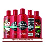 Old Spice Pure Sport 2-in-1 Shampoo and Conditioner 25.3 Fl Oz - 2-in-1