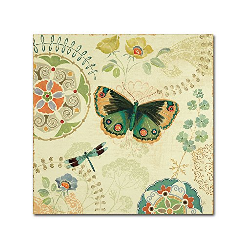 Folk Floral II by Daphne Brissonnet Wall Decor, 14 by 14-Inch Canvas Wall Art