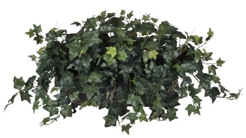 English Ivy Flowers - House of Silk Flowers Artificial English Ivy Ledge Plant