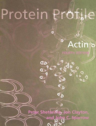 Actin (Protein Profiles)