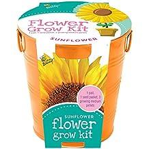 Buzzy 95204 Kids Flower Grow Painted Pail Kit, Sunflower