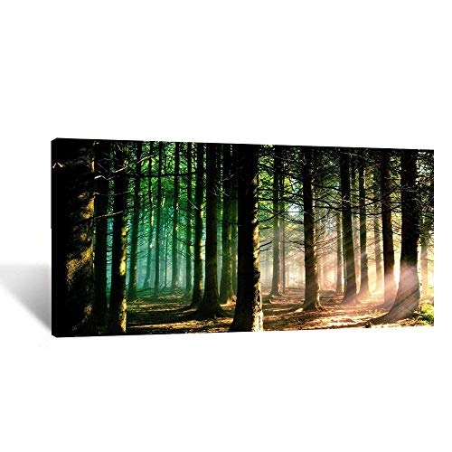 Forest Canvas Art - Kreative Arts Modern Canvas Painting Wall Art The Picture for Home Decoration Autumn Fall Scene Foggy Forest in Sunny Rays Landscape Forest Print on Canvas Giclee Artwork for Wall Decor 20x40inch
