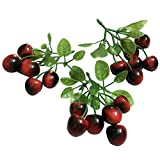 Colorfulife Artificial Plastic Lifelike Mini 6 Fake Fruit Vegetable String Model Party Home Decoration Teaching Props Photo Child Education Fruits House Kitchen Creative Decorative (3, Black-red Cherry)