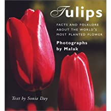 Tulips: Fact And Folklore About The Worlds Most Planted Flowers