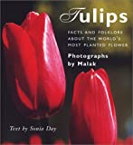 Tulips: Facts and Folklore About the World's Most Planted Flower