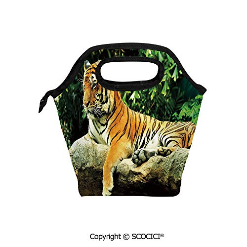 (Reusable Printed Design Lunch Bag Resting Feline in the Forest on a Large Rock Sublime Carnivore Beast Beautiful Nature Lunch Tote bag for Work and School.)