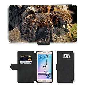 CARD POCKET BOOK CASE PU LEATHER CASE // M00105717 Araña Tarántula Miedo Aracnofobia // Samsung Galaxy S6 (Not Fits S6 EDGE)