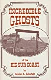 Incredible Ghosts of the Big Sur Coast, Randall A. Reinstedt, 0933818084