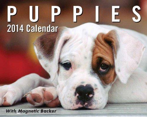 Dog 2014 Mini Calendar - Puppies 2014 Mini Day-to-Day Calendar