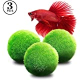 """Luffy 3 Giant Marimo Moss Balls (1.5"""") : Biological, Natural, Chemical Free Filter System : Removes Nitrates : A Beautiful way to keep Fish and Aquarium Plants Healthy : No Water Change required"""