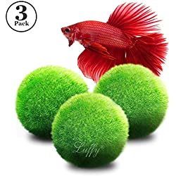 """3 Luffy Giant Marimo Moss Balls (1.5"""") : Biological, Natural, Chemical Free Filter System : Removes Nitrates : A Beautiful way to keep Fish and Aquarium Plants Healthy : No Water Change required"""