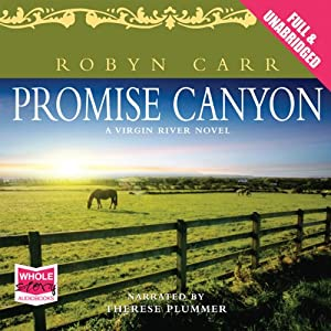 Promise Canyon Audiobook
