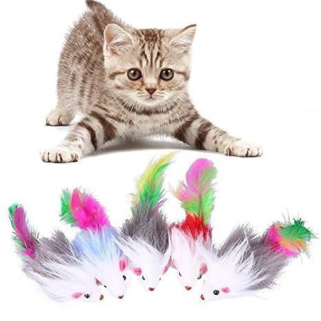 Broadroot Juguetes de gato suave, 5 piezas, de forro polar, divertidos, juguetes para gatos: Amazon.es: Productos para mascotas